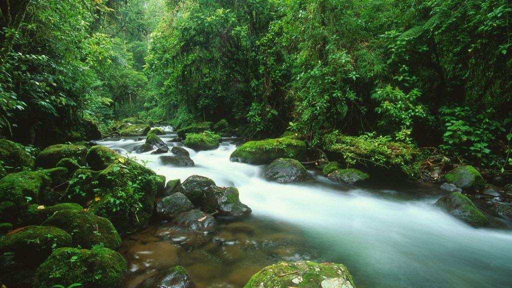 Costa-RIca-River-1024×576